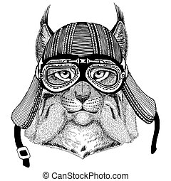 Wild cat Lynx Bobcat TrotHand drawn image of animal wearing...