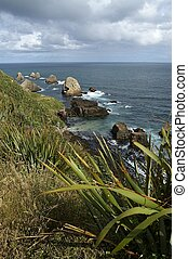 Wild coast line