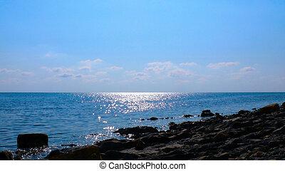 Wild coast of the sea