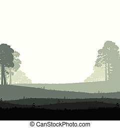 Wild coniferous forest - Panorama of wild coniferous forest