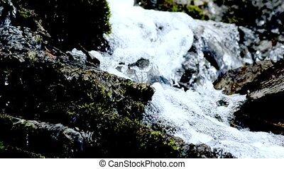 Wild creek falling down