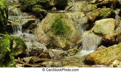 wild creek with rocks