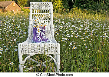 purple sneakers - Wild daisy bouquet in purple sneakers on ...