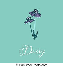 Wild Daisy flower design isolated object
