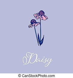 Wild Daisy flower design isolated object