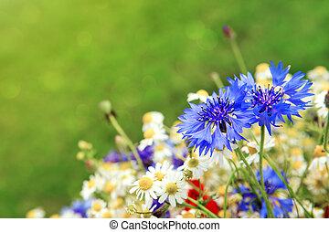 Wild flower bouquet . - Wild flower bouquet with poppies...