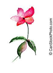 Wild flower, watercolor illustration