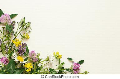 Wild flowers corner