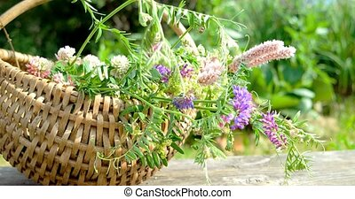 Wild flowers in a wicker basket
