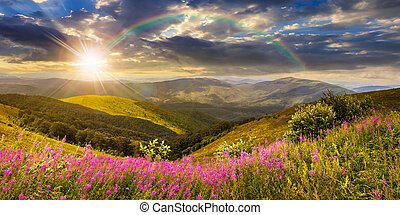 wild flowers on the mountain top at sunset - composite...