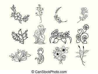 Wild flowers set. Sketch wildflowers and herbs nature botanical elements