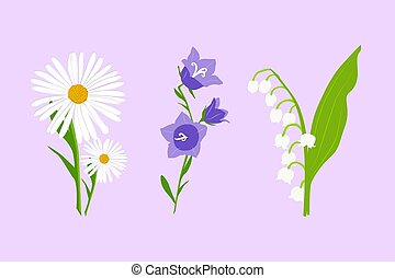 Wild flowers set. Vector daisy, bell flower and Lily of the valley isolated on light violet background.