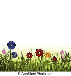 wild flowers - Wild flowers in grass with white background