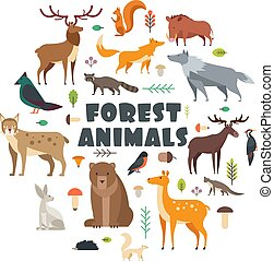 Wild forest animals and birds arranged in circle. Vector cover design