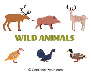 Wild forest animals with wild boar, deer, moose, duck, grouse and partridge. Vector illustration.