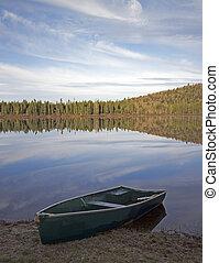 wild forest lake