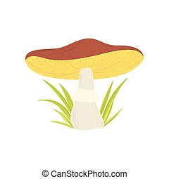 Wild Forest Mushroom and Green Growing Grass Vector ...
