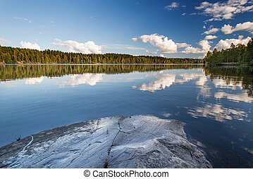 Norwegian landscape: Wild forrest and lake