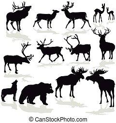 Wild-Forst Tiere.eps