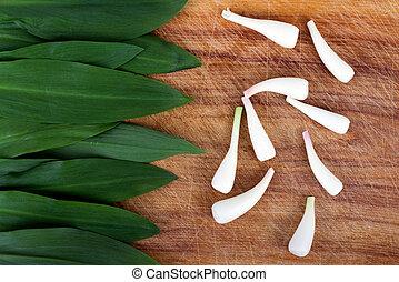 wild garlic Allium tricoccum on woo - wild garlic Allium...