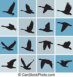 Wild geese pattern