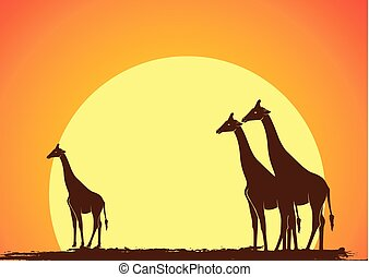 Wild Giraffe Silhouettes in Sunset Vector
