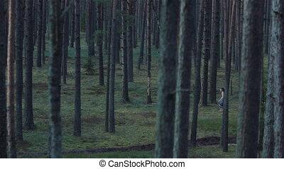 Wild girl running through forest
