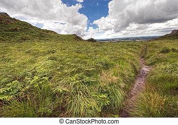 wild hdr landscape