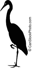 wild heron stands silhouette vector on a white background