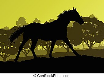 Wild horse in nature vector