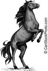 Wild horse racer rearing vector sketch - Horse on rears....