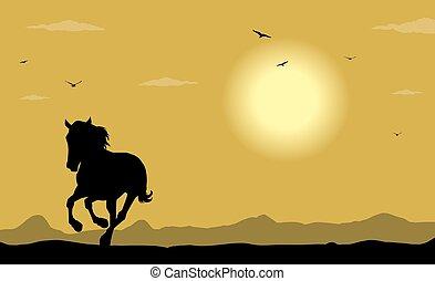 wild horse  - silhouette of wild horse