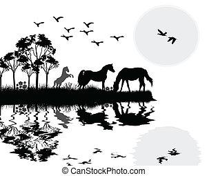 Wild horses on beautiful  landscape
