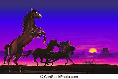 Wild Horses on the Prairie - Three Wild Horses on the...