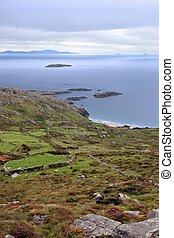 wild irish fields and islands coastal view - scenic view in...