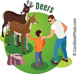 wild, isometric, deers, achtergrond