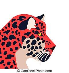 Wild jaguar animal on isolated background