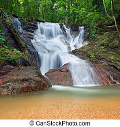 Wild jungle forest and scenery waterfall cascade with tropical plants. Nature background of Thailand evergreen national park