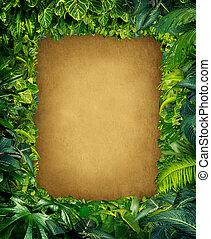 Wild Jungle Frame