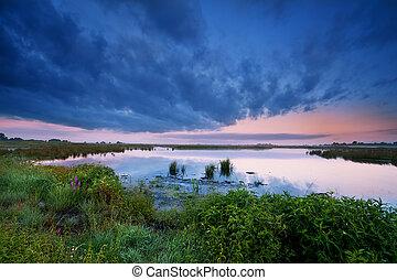 wild  lake in summer