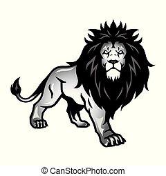 wild, leeuw, vector, houding