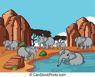 wild, levend, vijver, olifanten