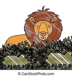 wild lion in the jungle scene