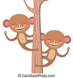 wild monkeys couple in the tree