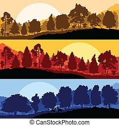Wild mountain forest nature landscape scene collection...