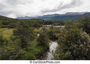 Wild nature in Tierra del Fuego National Park, Argentina