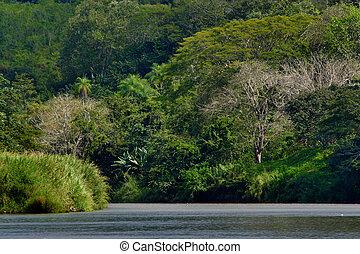 Rio Grande Tarcoles, Costa Rica