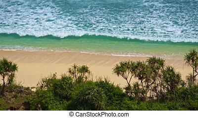 Wild ocean shore upper view