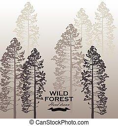 Wild pine forest background. Landscape nature. Pine tree vector illustration.