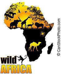 wild, plakat, afrikas